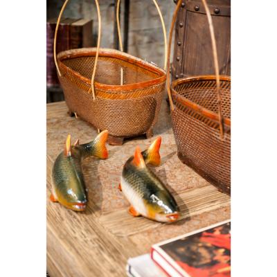 Medium coloured fish