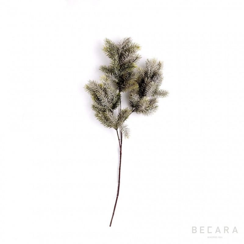 Rama nevada de abeto con piñas - BECARA