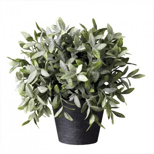 Mint flowerpot