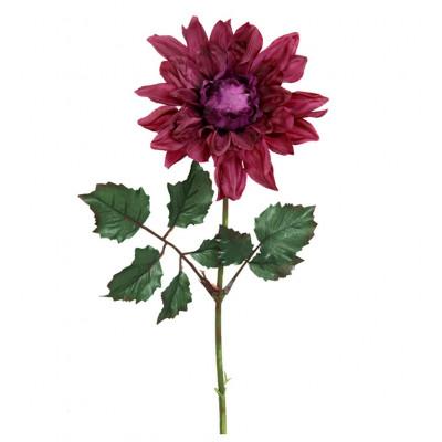 Flor de dalia roja - BECARA