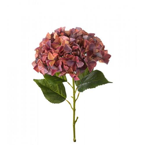 Flor de hortensia granate - BECARA