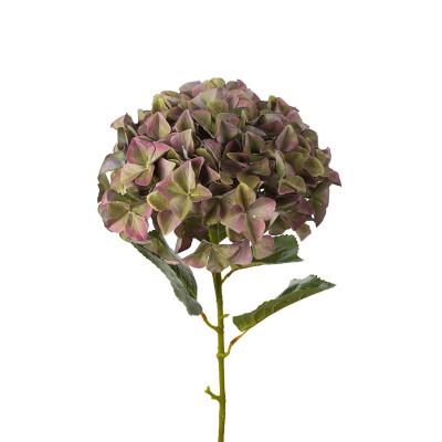 Flor de hortensia verde - BECARA