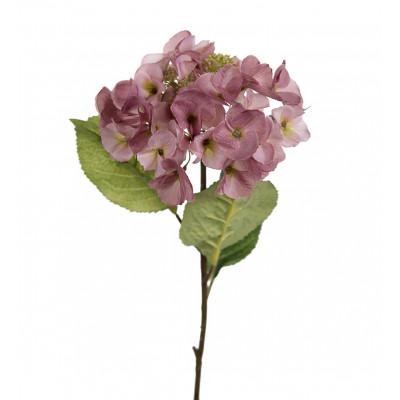 Flor de hortensia rosa pequeña - BECARA