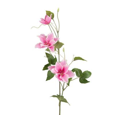 Flor de clemátide rosa - BECARA