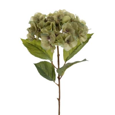 Flor de hortensia verde pequeña - BECARA