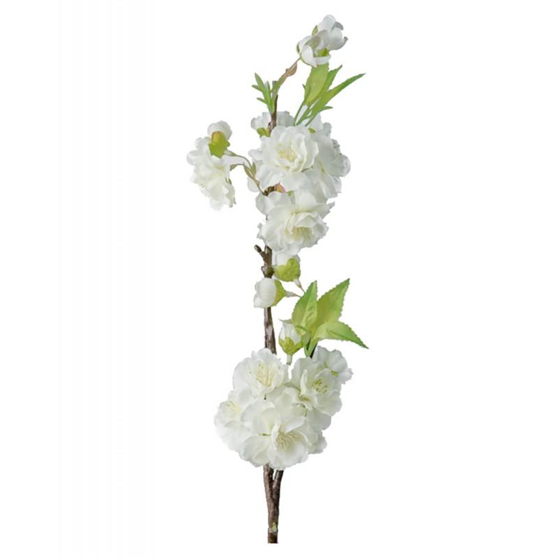 White cherry-tree branch