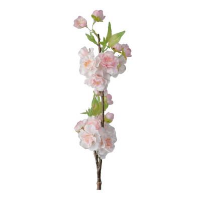 Pink cherry-tree branch
