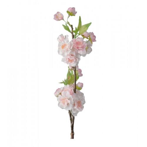 Rama de cerezo rosa - BECARA