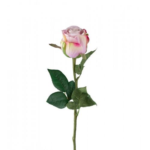 Flor de rosa grande blanco/rosa - BECARA