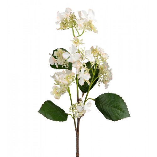 Rama de hortensia blanca - BECARA
