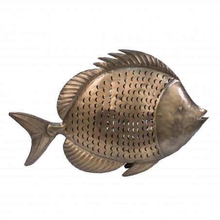 BIG SILVER FISH