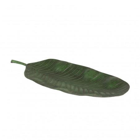 Hoja de ficus de hierro verde