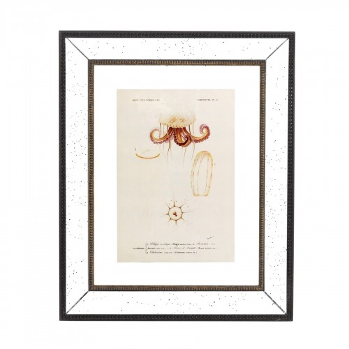 Cuadro espejado con medusa - BECARA