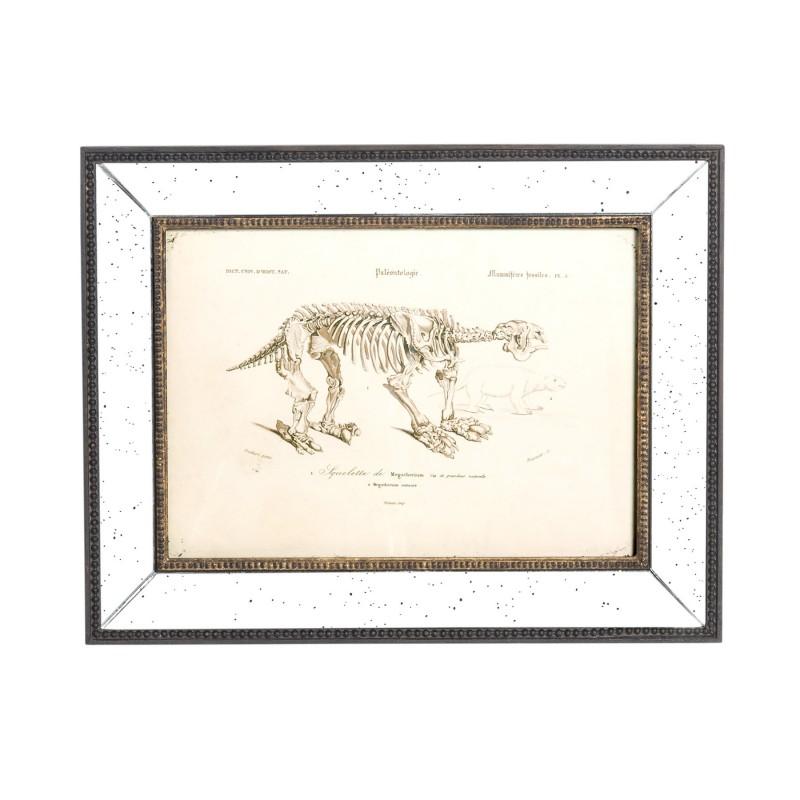 Mammal skeleton art work (II)