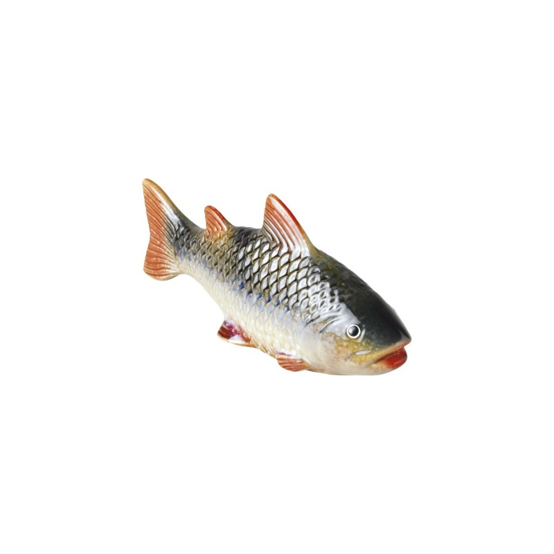 Medium coloured fish