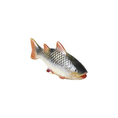 Small coloured fish