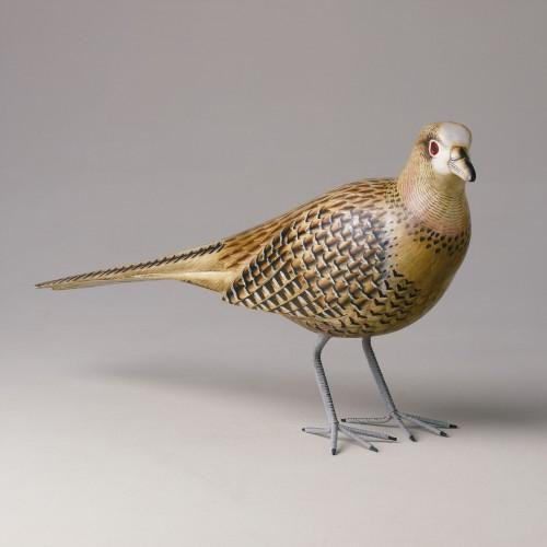 Brown-ochre pheasant