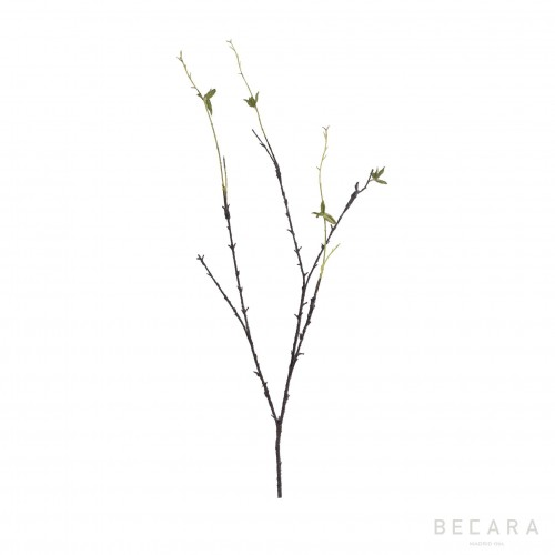 129cm peach tree branch