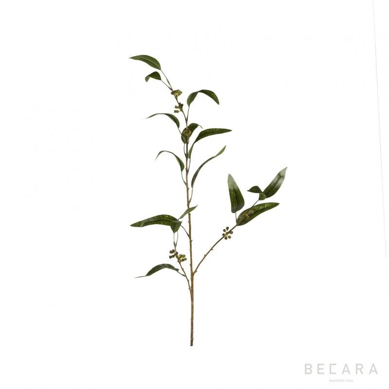 Rama de eucalipto 116cm - BECARA