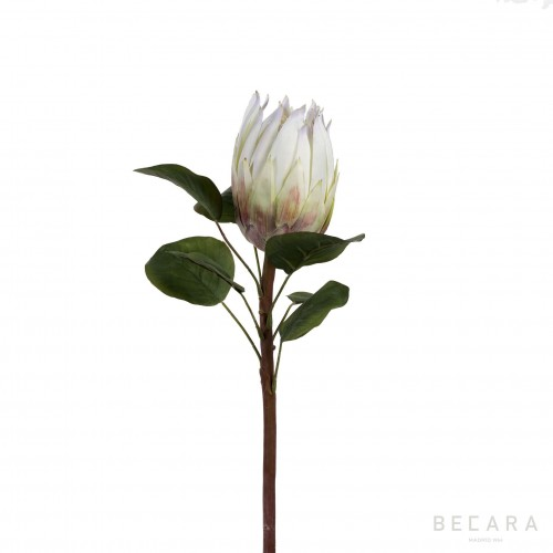 68cm white Protea flower branch
