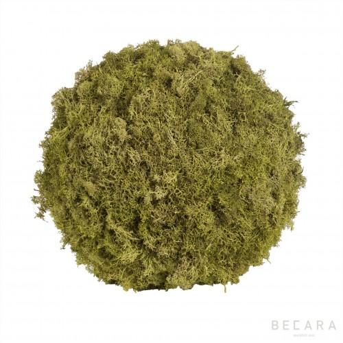 Big moss ball