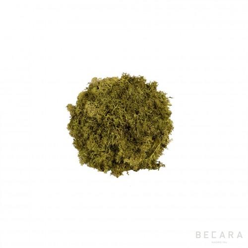 Bola de musgo pequeña