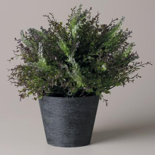 Lavander flowerpot