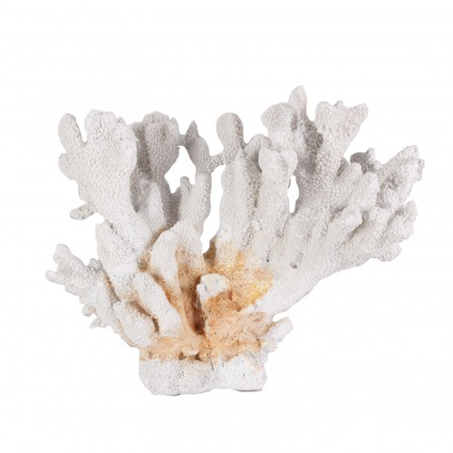 Mackay coral figure