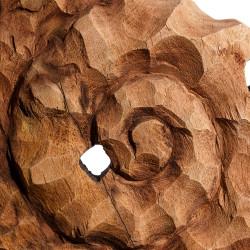 Fósil Caracol - BECARA