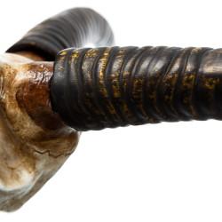 Cuernos de gacela - BECARA