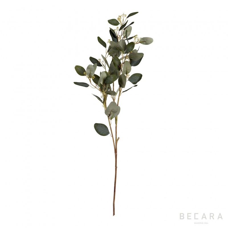 Leaves with seeds branch