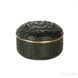 Caja caimán