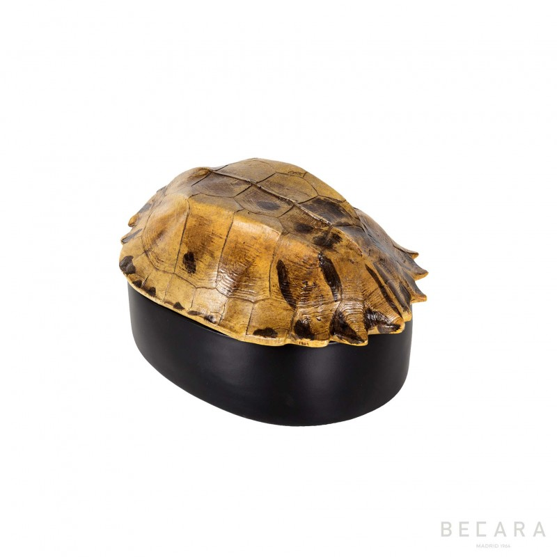 Small box with turtle shell