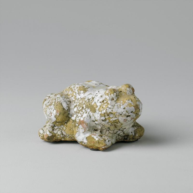 Rana craquele blanca pequeña - BECARA