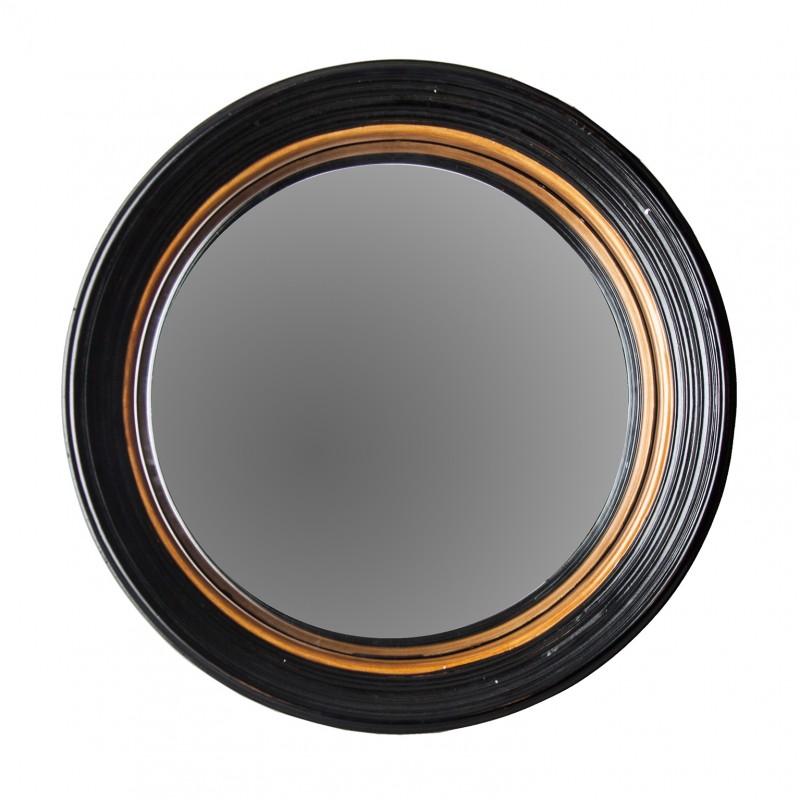 Big Darwin mirror