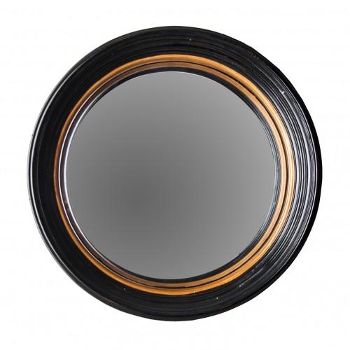 Small Darwin mirror