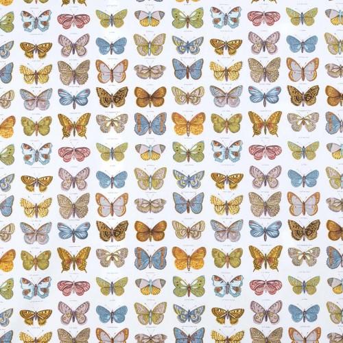 Tela blanca con mariposas - BECARA