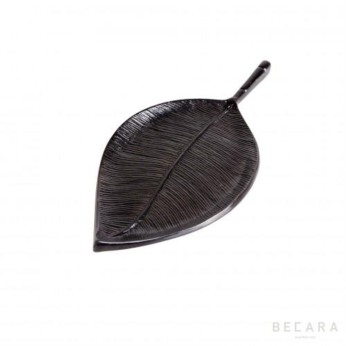 Small creeper leaf
